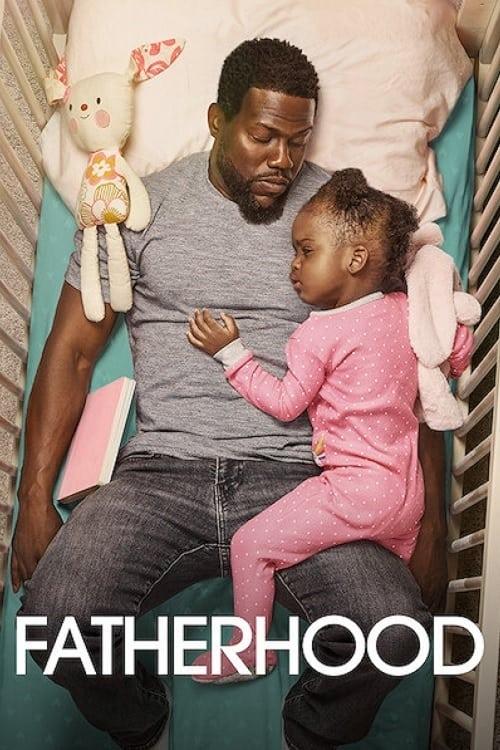 """Affiche du film """"Un papa hors pair"""""""